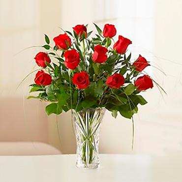 Amazing Roses - HUANCAVELICA